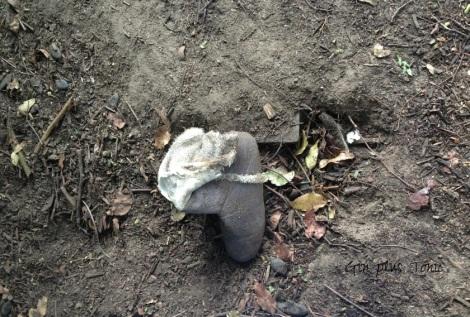 stolen slipper